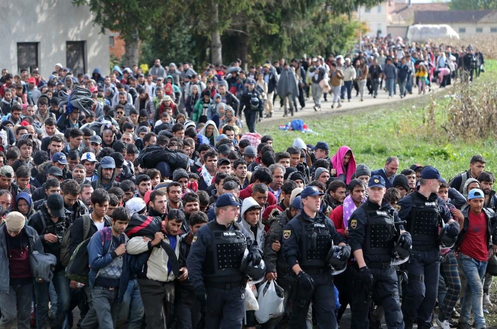 migráció iszlám Custom