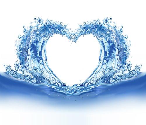 vizsziv