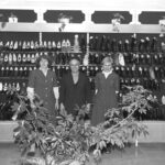 1978 – Solid cipőüzlet.
